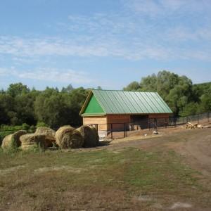 На этой ферме поселили животных